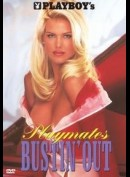 Playboy: Playmate Of The Year: Victoria Silvstedt
