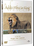 Addo The African King