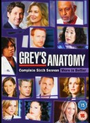 Greys Hvide Verden: Sæson 6 (Greys Anatomy: Season 6)