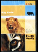 Killer Instinct: Big Cats